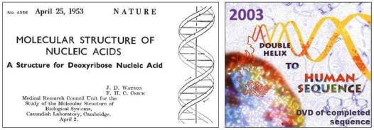 Images of the first publication of DNA's structure adjacent to the image on the cover of the published human genome