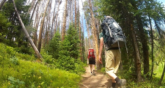 Photo of two people hiking along a wooded trail